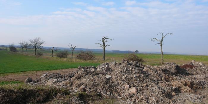 Geschützter Landschaftsbestandteil wird kassiert